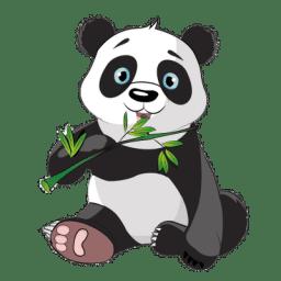Mucit Panda Crunchbase Company Profile Funding