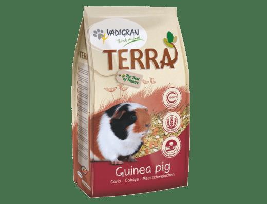 TERRA Meerschweinchen