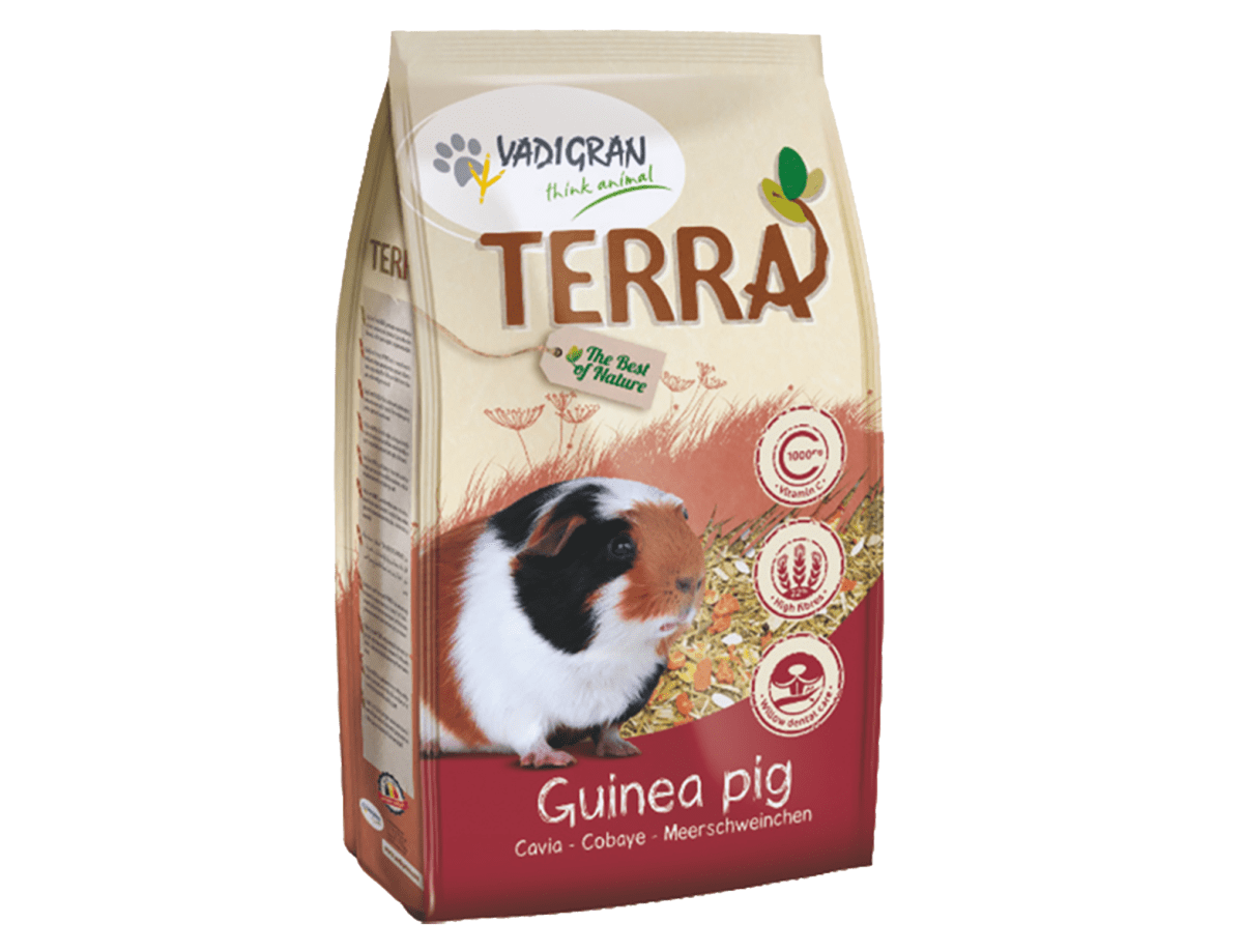 TERRA Guinea Pig