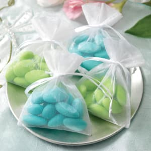 Organza Wedding Favor Bags - Pack of 10