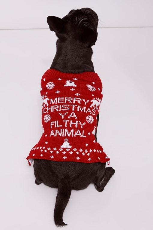 MERRY CHRISTMAS YA FILTHY ANIMAL RED SLOGAN DOG JUMPER