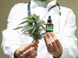 Verordnung von cannabisllmqat