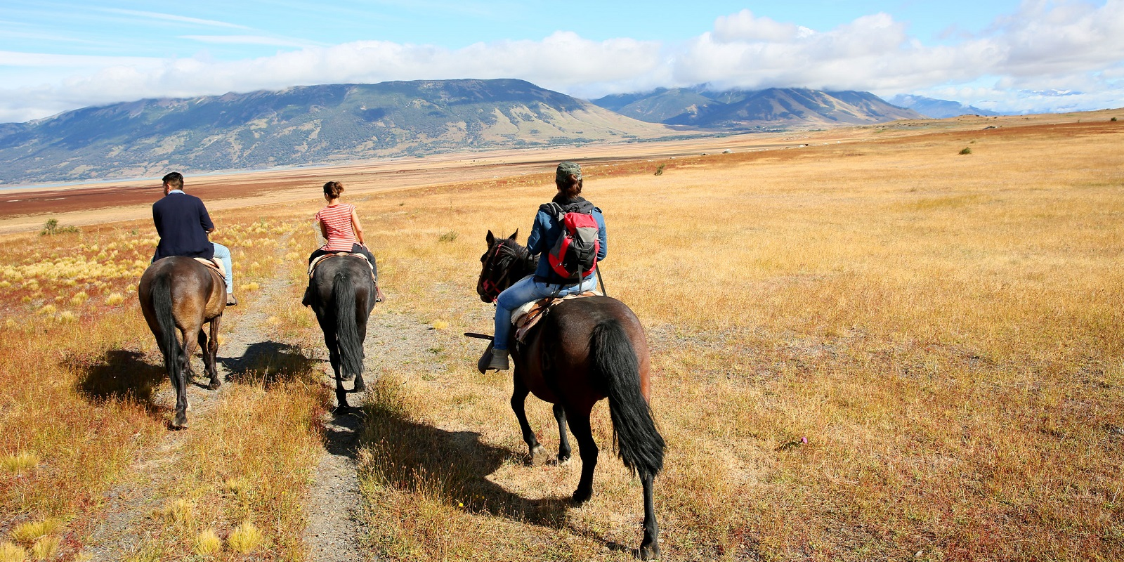 Riding horses in Patagonian steppe