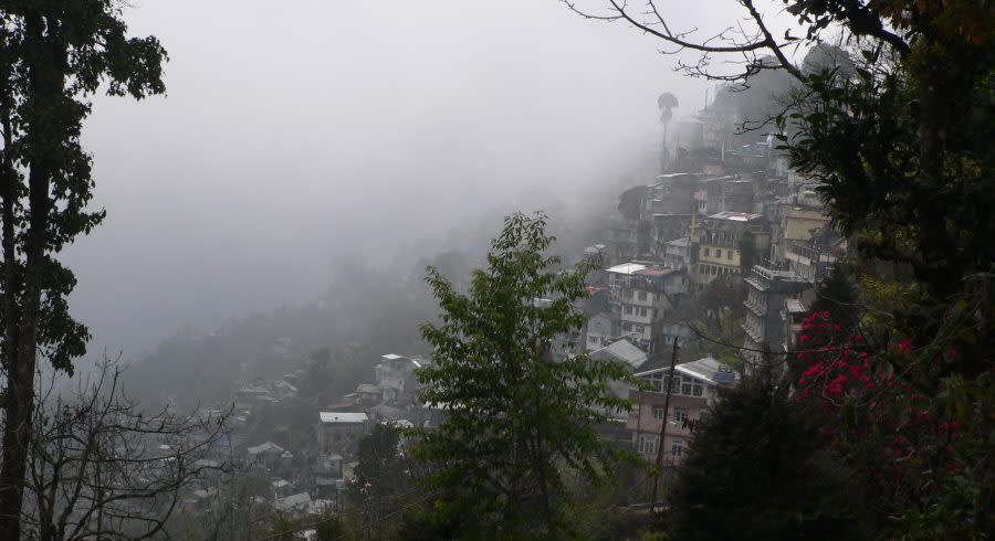 Nebel in Sikkim