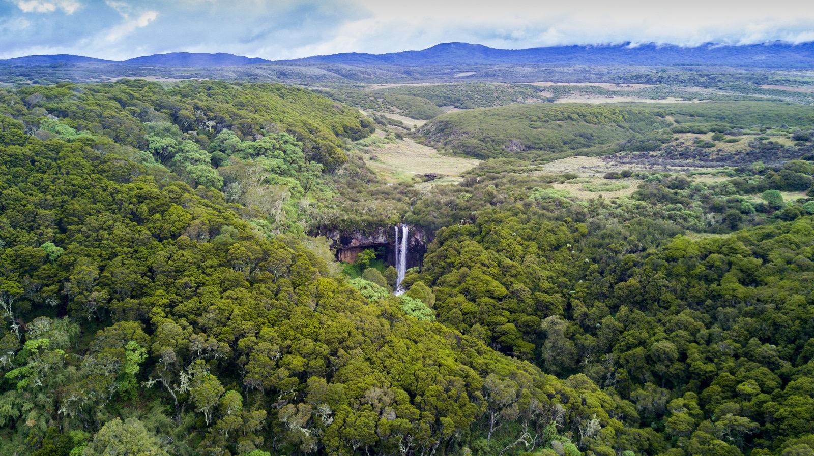 Waterfall in Aberdares