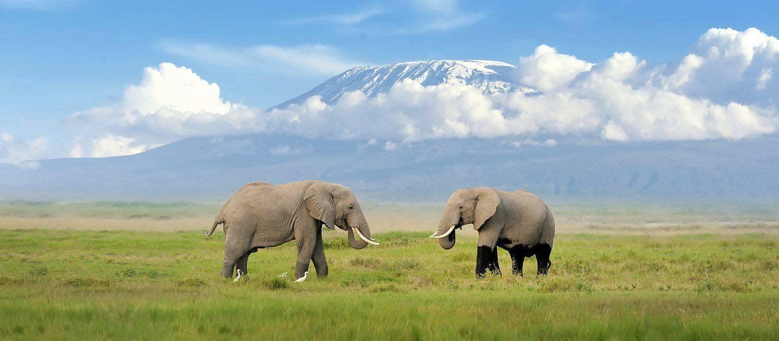 Reiseziel Kilimanjaro Tansania