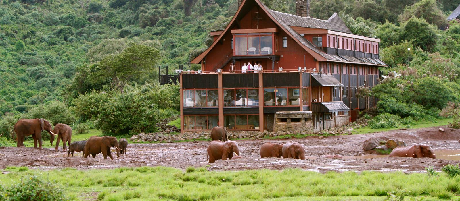 Hotel The Ark Kenya