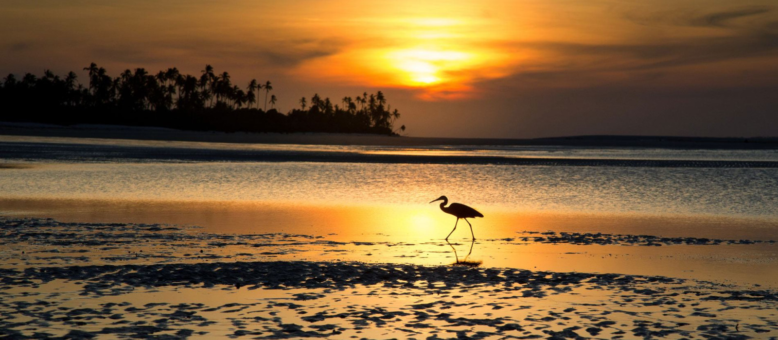 Reiseziel Mafia Island Tansania