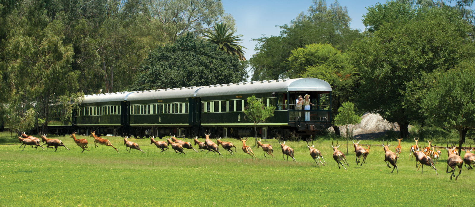 Okavango Delta, Victoria Falls and Rovos Rail Adventure Tour Trip 1