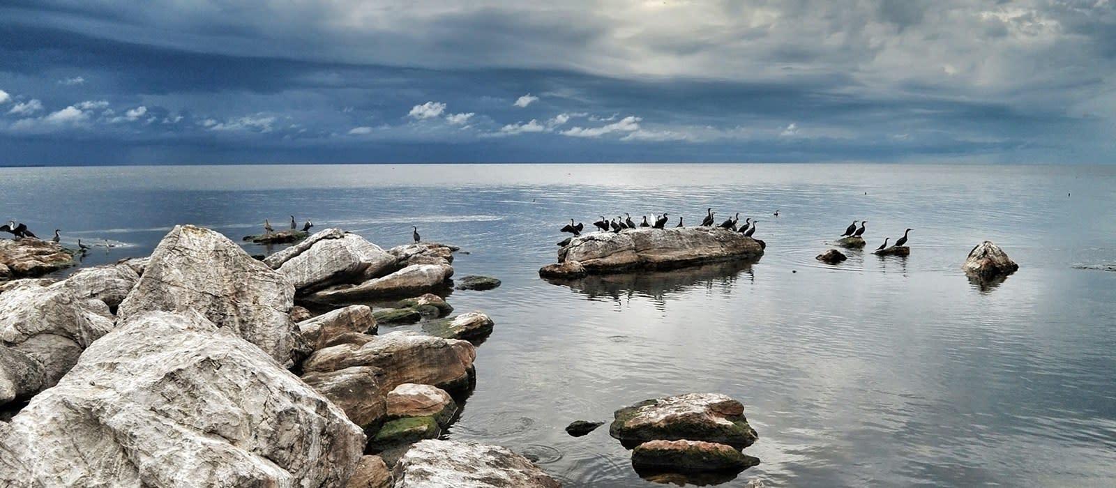Ins wilde Herz Tansanias – luxuriös reisen und Gutes tun Urlaub 1