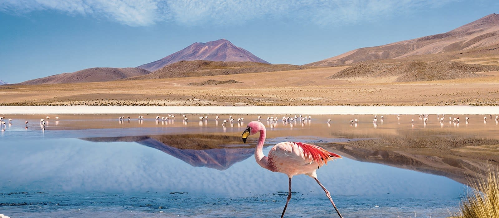 Bolivia: Landscapes and Culture Tour Trip 1