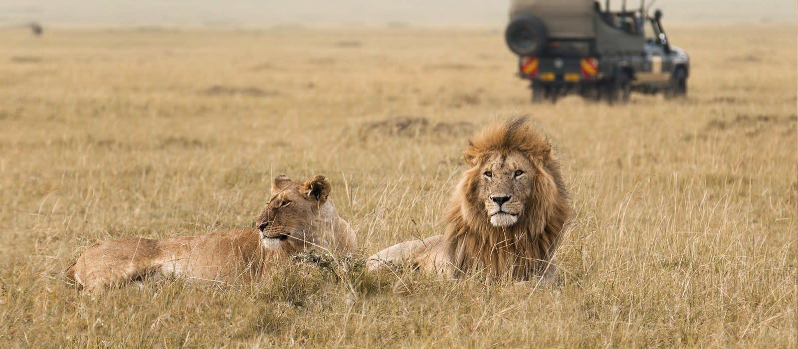 Wilde Schätze im Norden Tansanias Urlaub 1