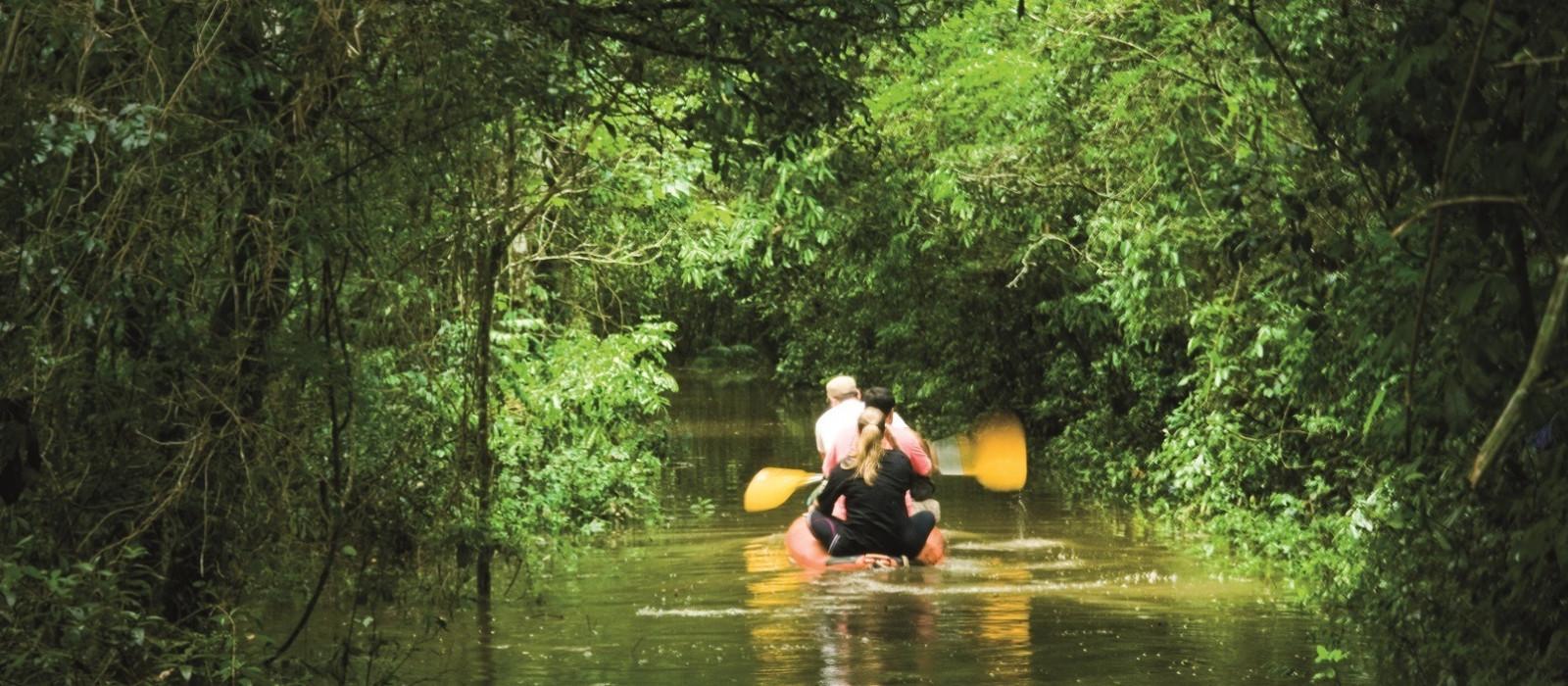 Brasilien: Tropen und Traumstrand Urlaub 1