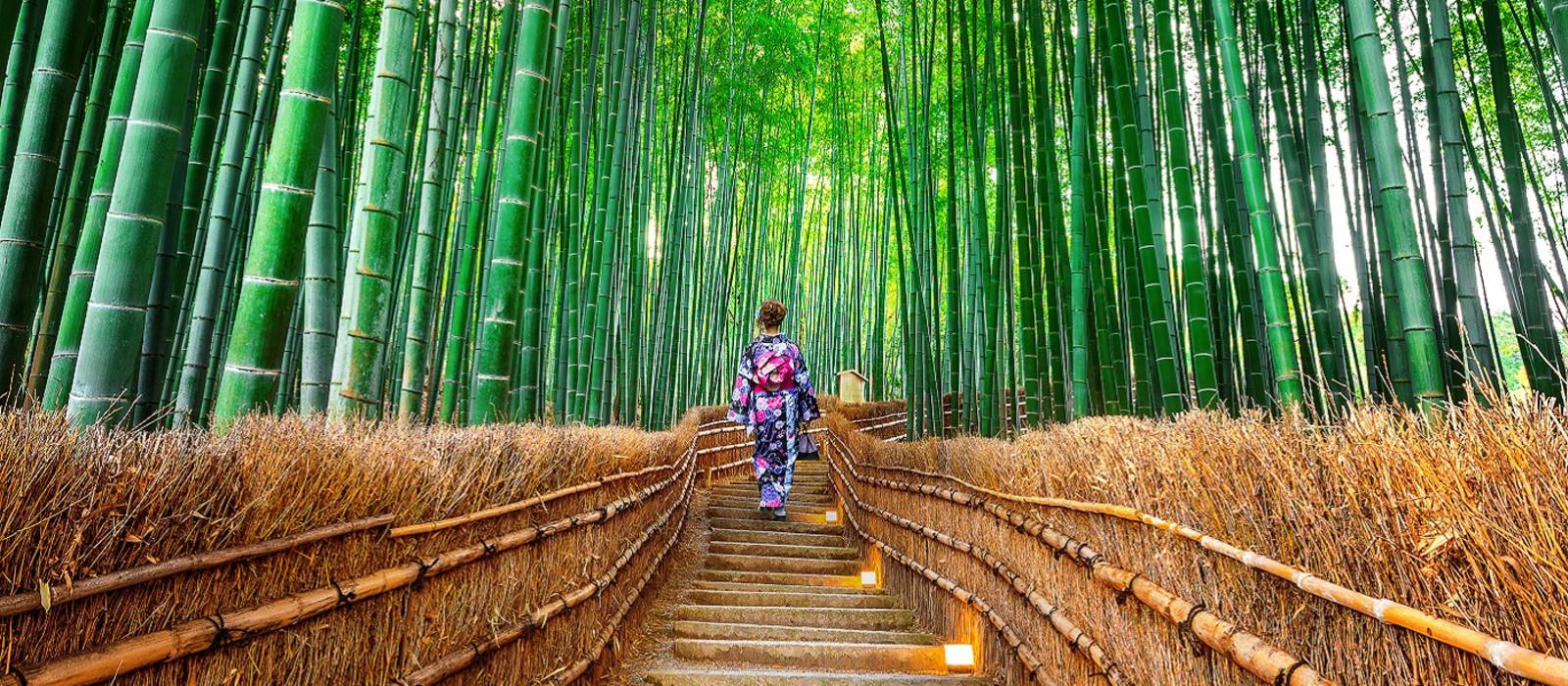 Intensive Japan Rundreise & Strand in Thailand Urlaub 1