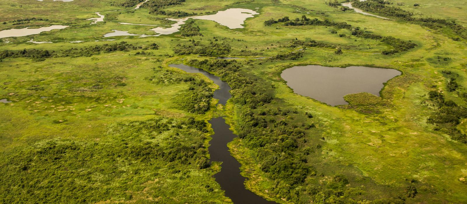 Brazil's Wildlife, Waterfalls and Beach Tour Trip 1