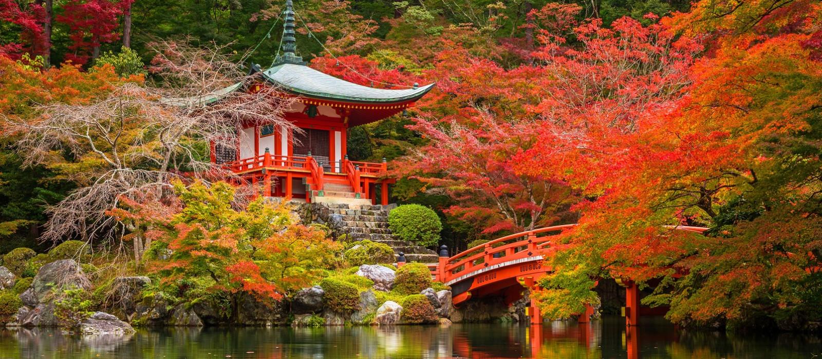 Japans Glanzpunkte: Luxus im Land der aufgehenden Sonne Urlaub 1