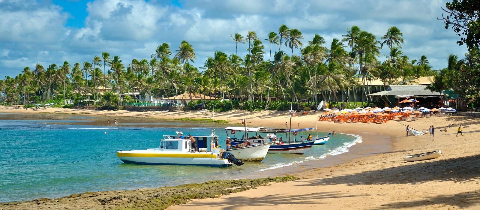 Brazil's Beaches, Rio and the Amazon Tour Trip 1
