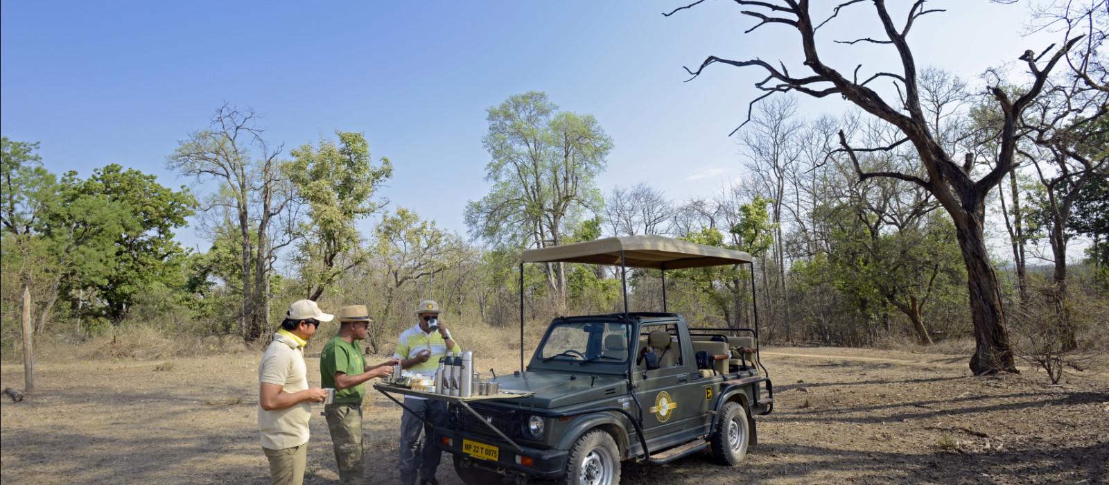 Wildlife Safari in Central India Tour Trip 1