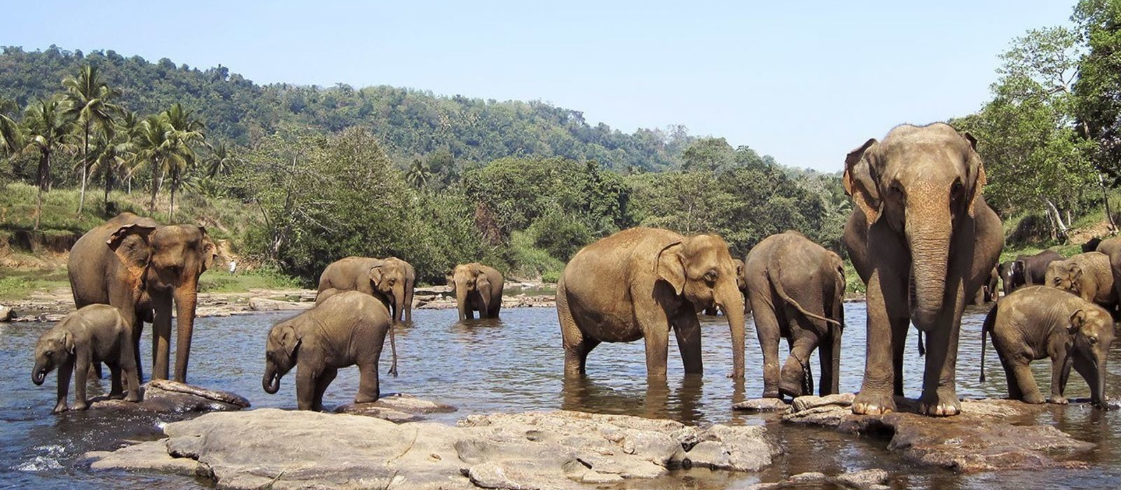 Highlights of South India Tour Trip 1