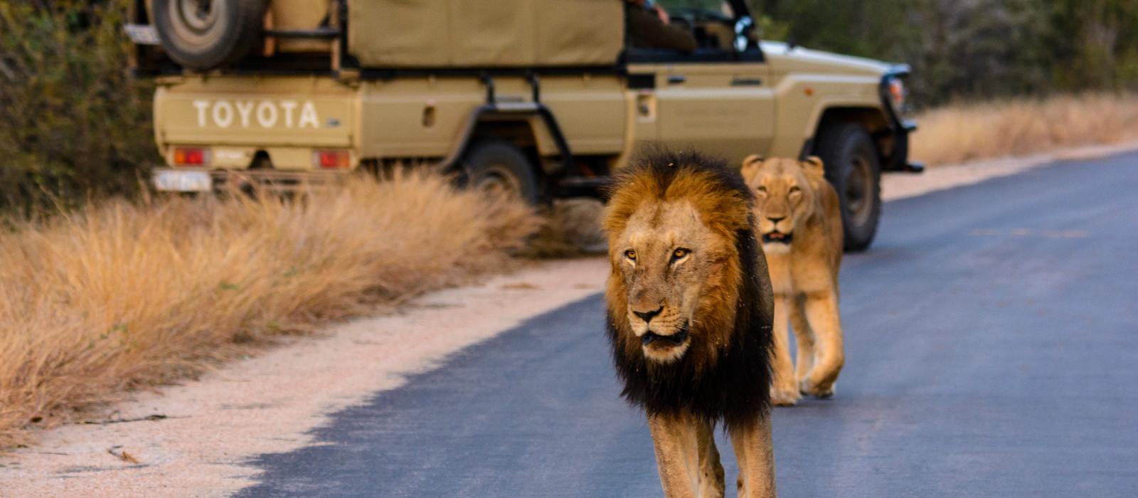 Namibia & Südafrika: Die Highlights des Südens Urlaub 1
