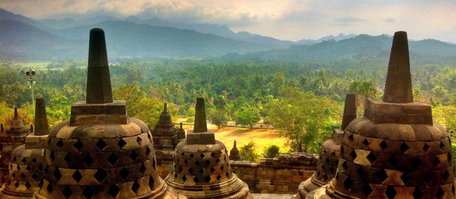 Indonesia's Orangutans and Temples Tour Trip 1