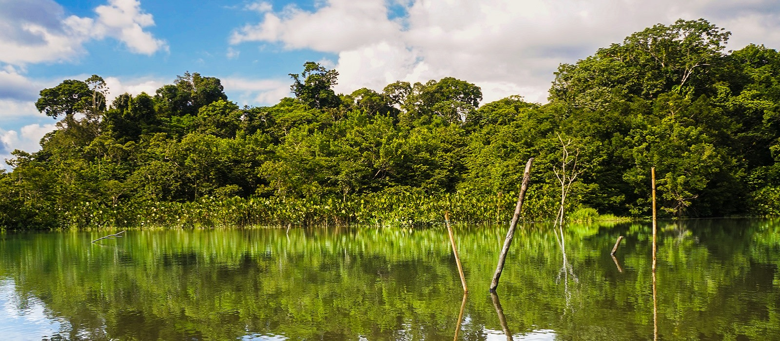 Ecuador –  Amazon, Mainland & Galapagos Tour Trip 1