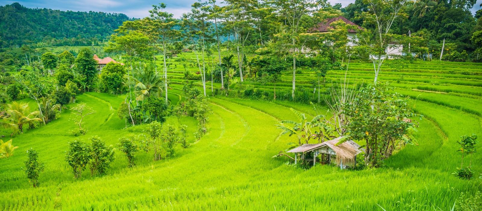 Reiseziel Sidemen Indonesien
