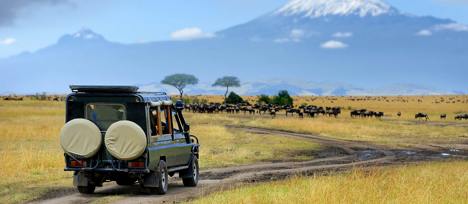 Kenya: Cultural Encounters and Wildlife Safari Tour Trip 1