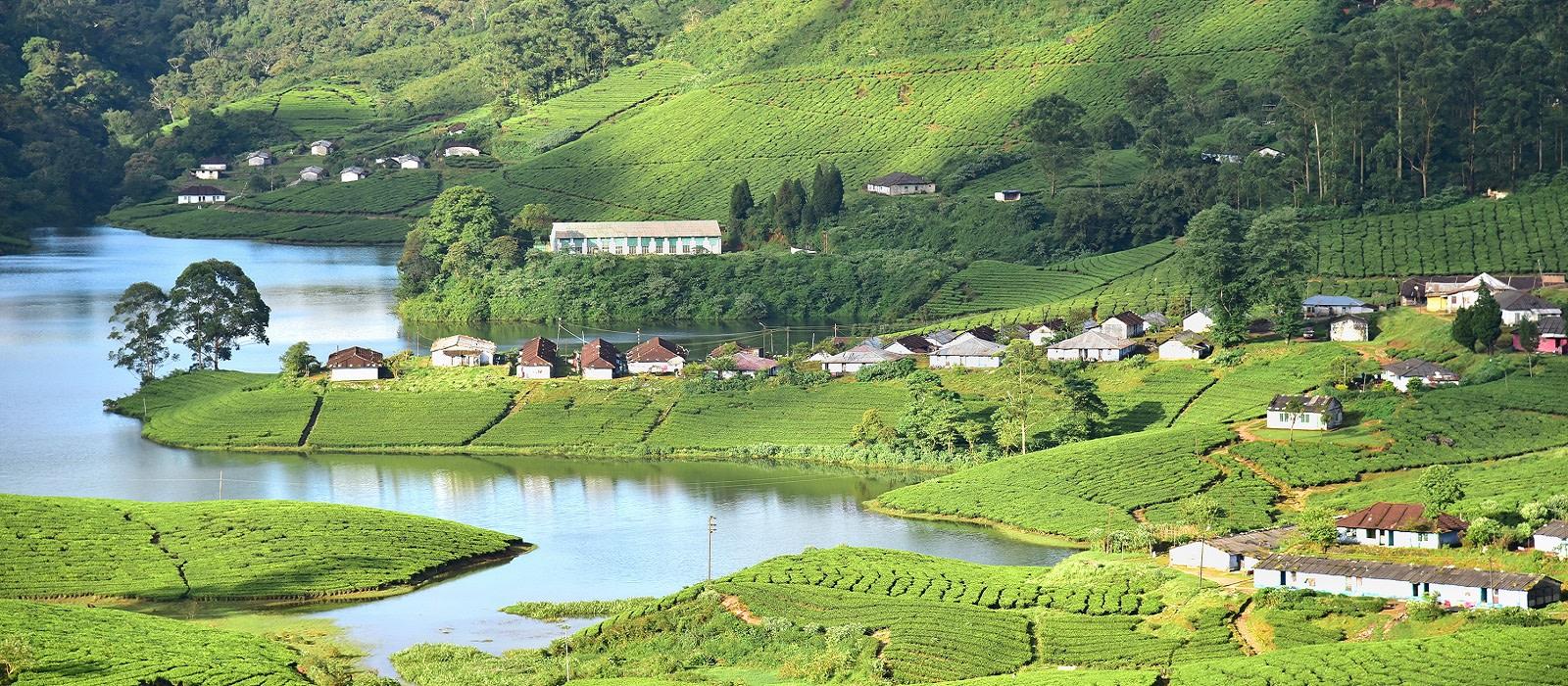 Kerala: Temples, Tea Plantations and Backwaters Tour Trip 1