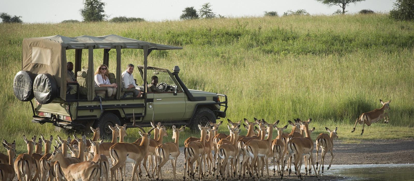 Classic Northern Tanzania Tour Trip 1