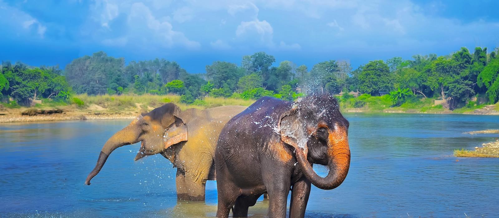Höhepunkte von Nepal & Bhutan Urlaub 1