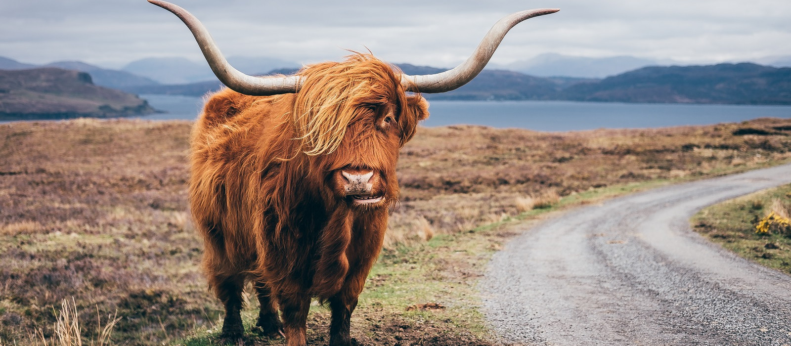 Classic Scotland Tour Trip 1