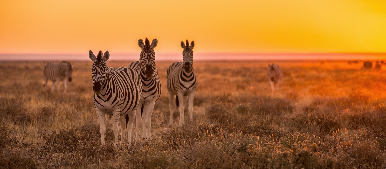 Road Trip: South Africa, Namibia and Victoria Falls Tour Trip 1