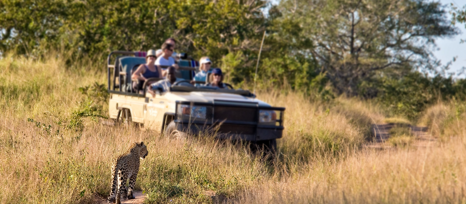 South Africa Overland: Highlights of the Cape Tour Trip 1