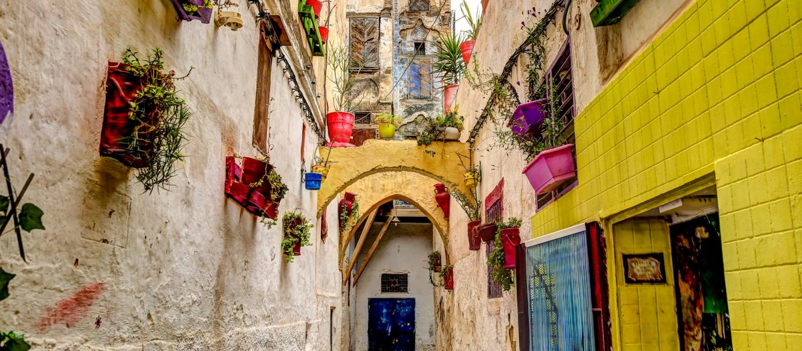 Marokko für Einsteiger: Magische Medinas & Beni Mellal Urlaub 1