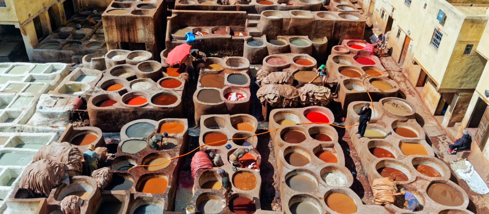 Marokkos Norden: Historische Städte & Abenteuer in der Sahara Urlaub 1
