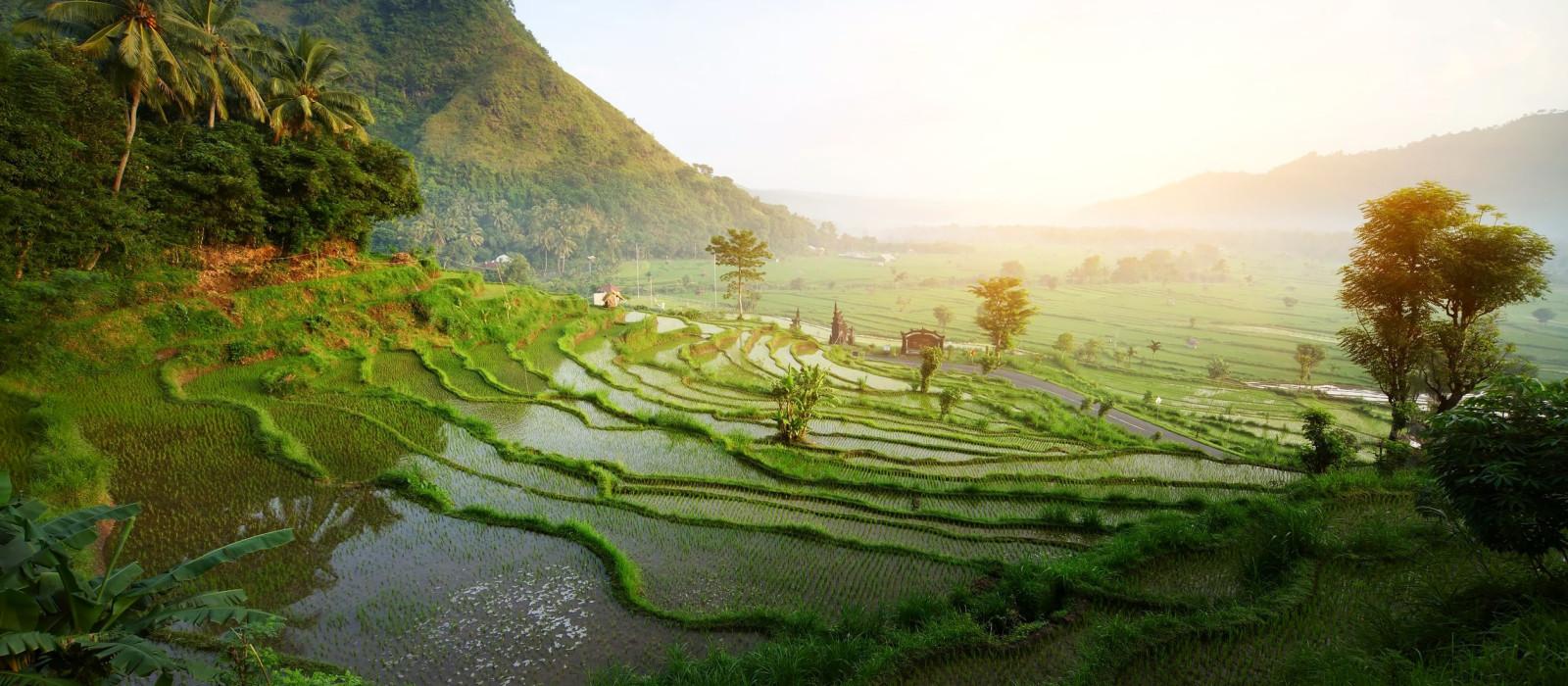 Sumba: Indonesiens verborgenes Paradies Urlaub 1