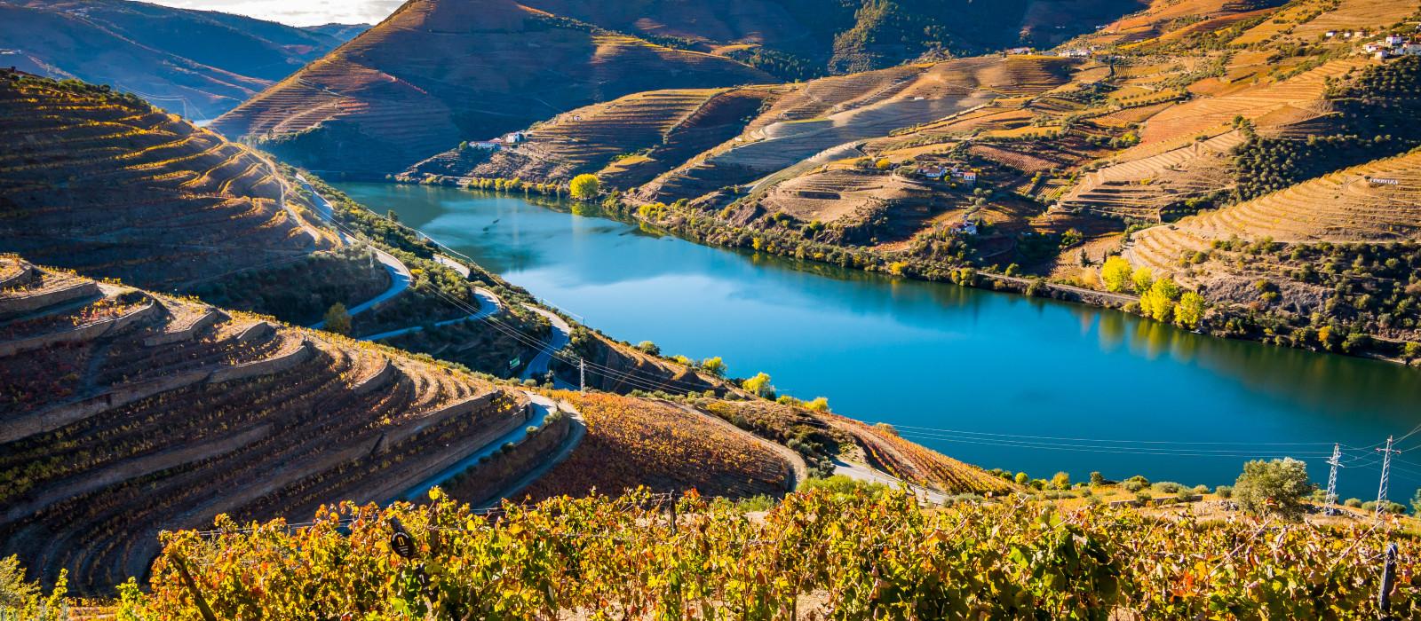 Kulinarische Reise durch Portugal Urlaub 1