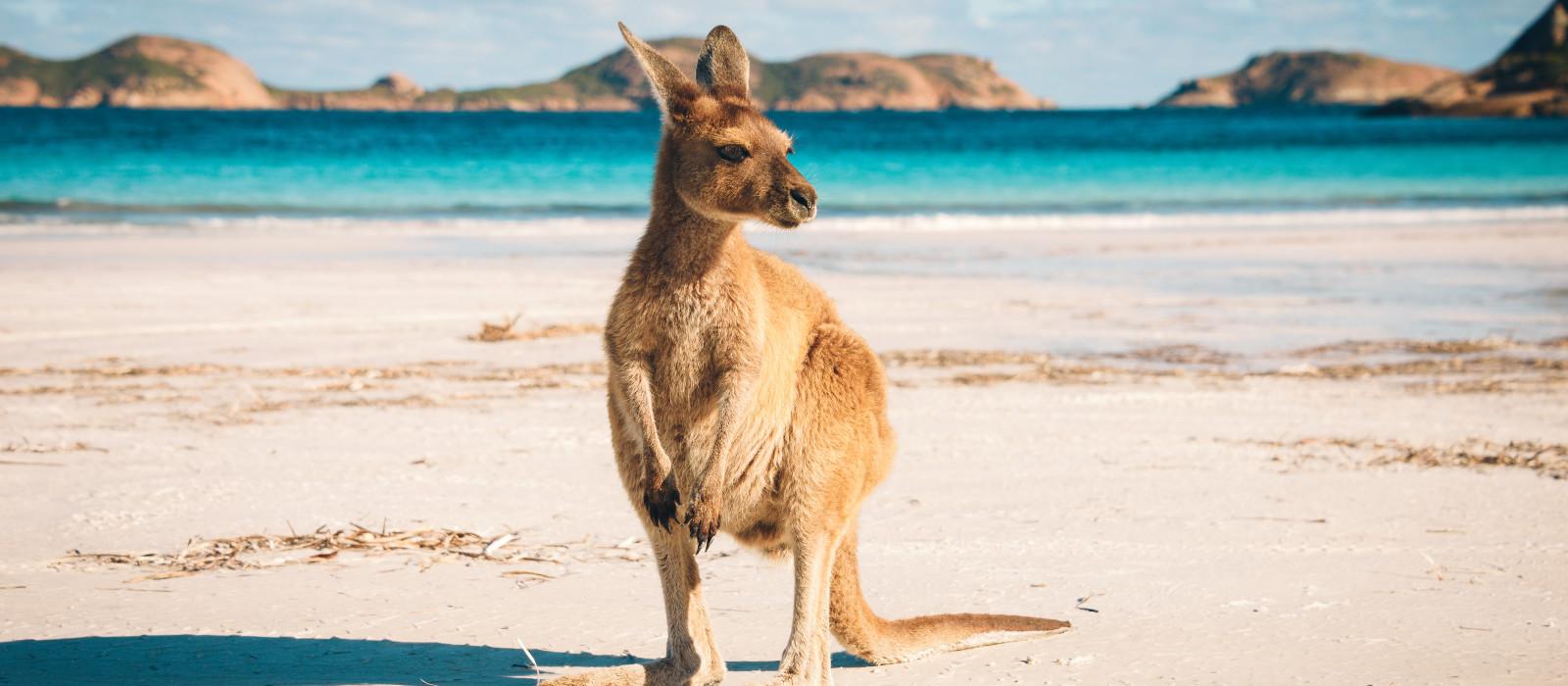 Australien Luxusreise – stilvoll in Down Under Urlaub 1