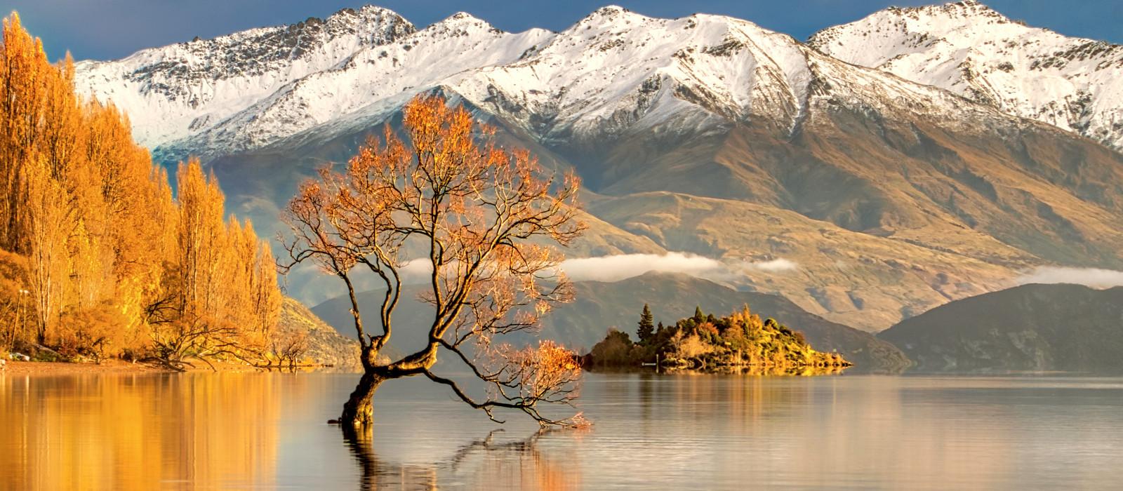Neuseeland Roadtrip – Naturwunder, Wein und Strand Urlaub 1