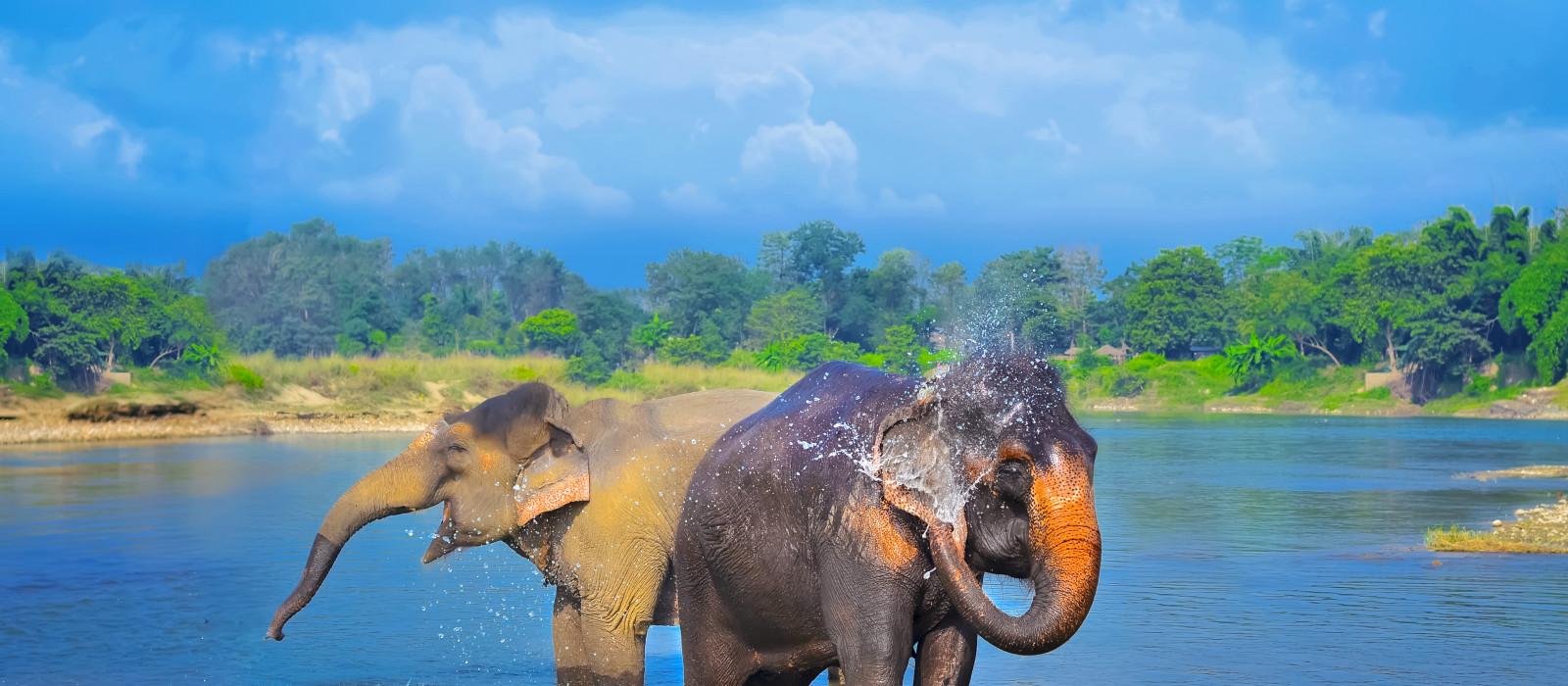 Nepals Kultur- und Naturwunder entdecken Urlaub 1