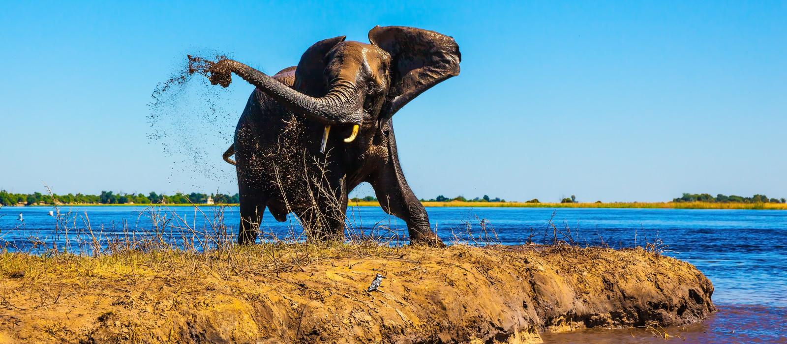 Botswana & Simbabwe – Safaris & Victoriafälle Urlaub 1