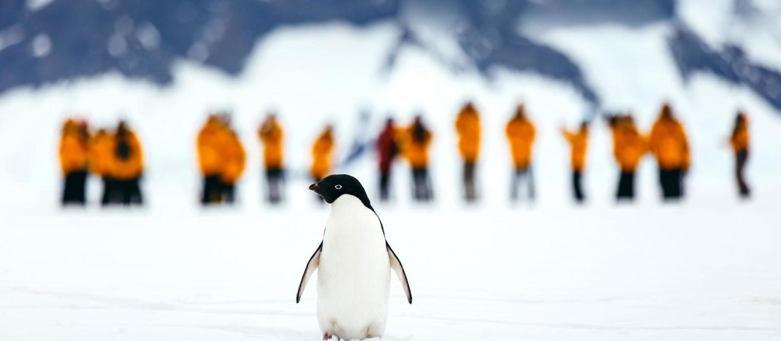 Antarktis Express – Höhepunkte der Antarktischen Halbinsel und Flug über die Drakestraße Urlaub 1