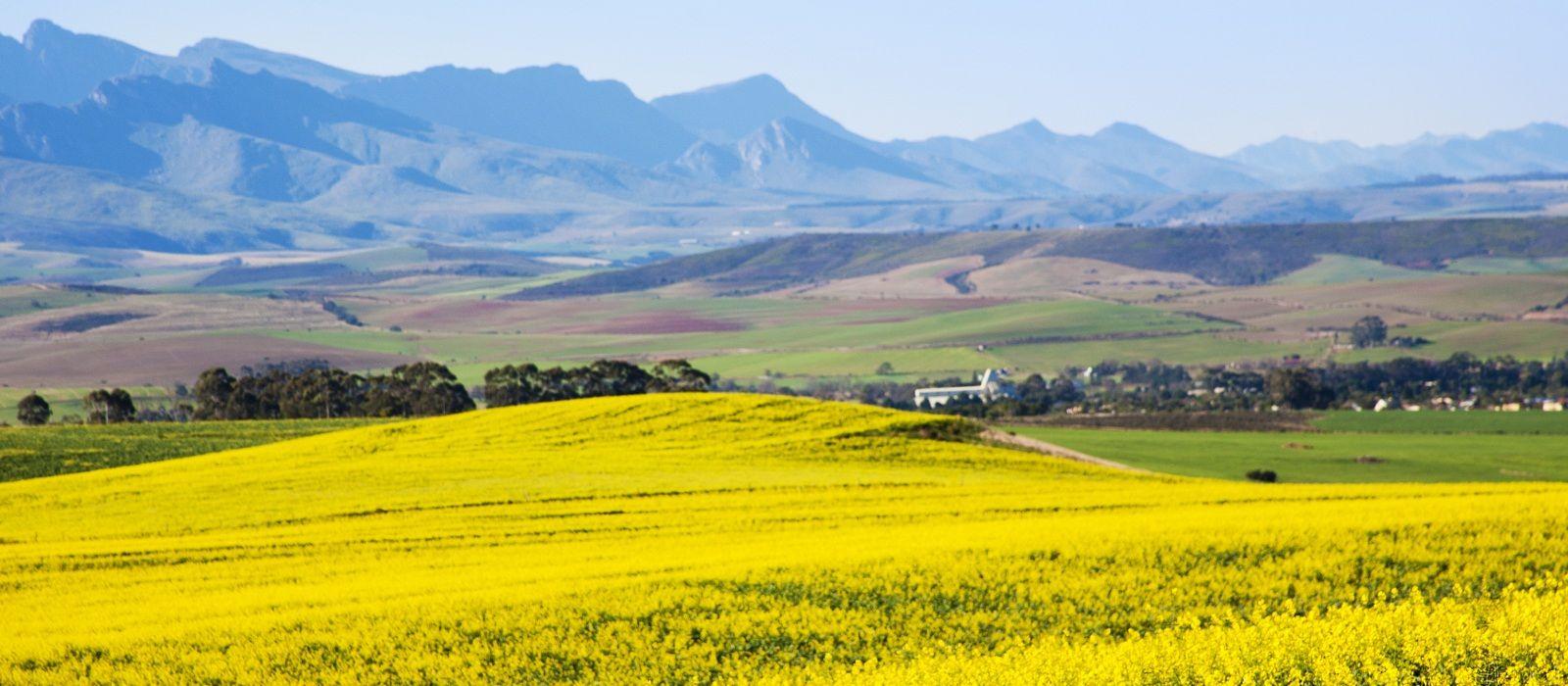 Destination Overberg South Africa