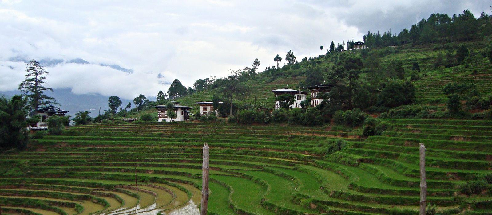 Hotel Trekking in Punakha Bhutan