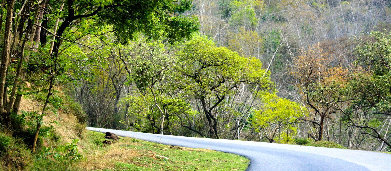 Destination Bandipur South India