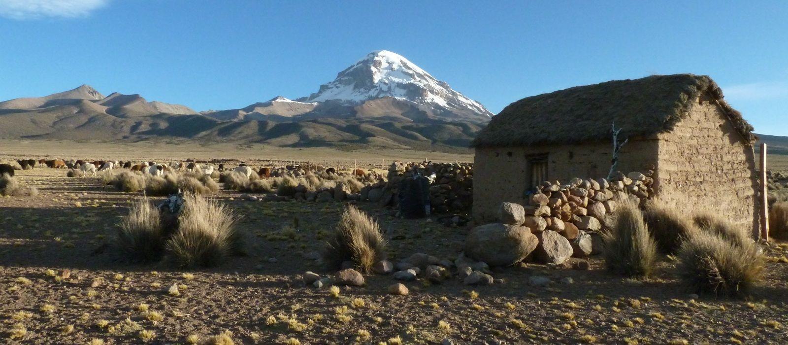 Destination Sajama Bolivia