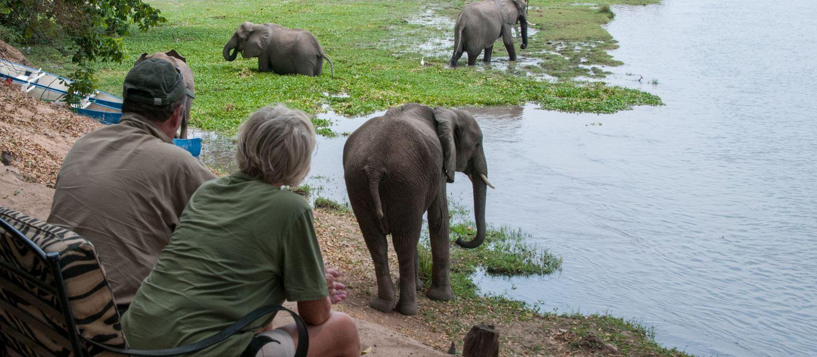 Hotel Goliath Safaris Luxury Tented Camp Zimbabwe