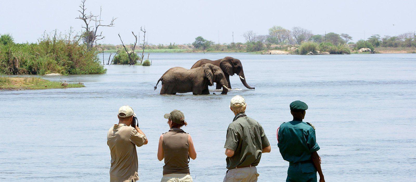Destination Liwonde National Park Malawi