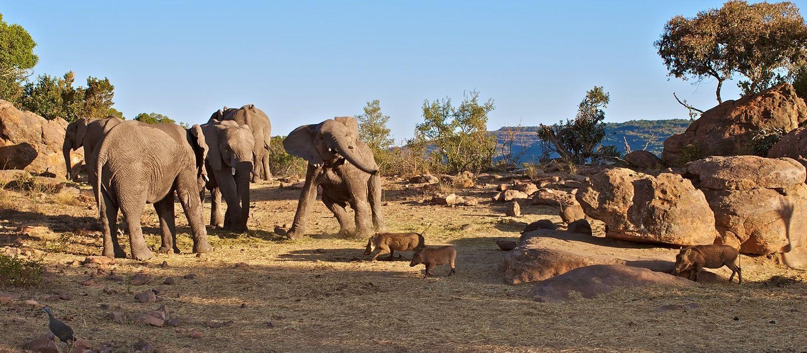 Destination Waterberg Plateau Namibia